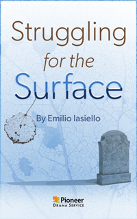 Cover for Struggling for the Surface